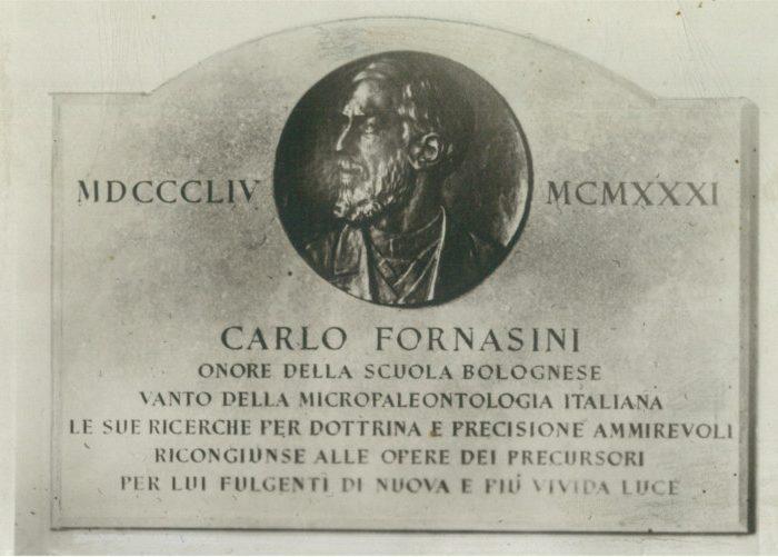 Epigrafe dott. Carlo Fornasini medium
